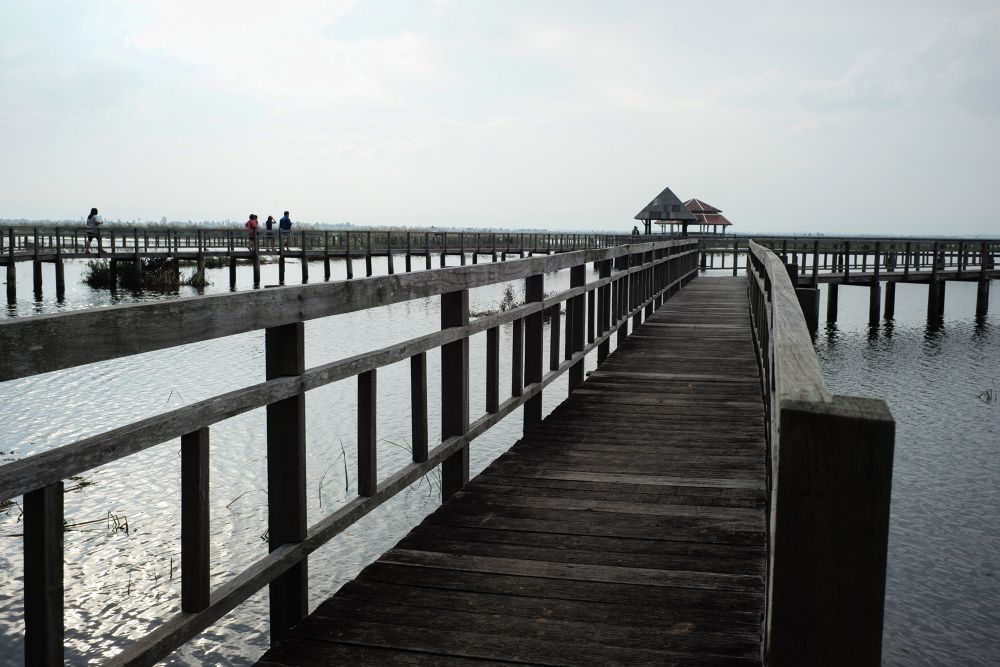 The bridge on lotus swamp at Sam Roi Yot. Here is far far away from Bangkok by Leon Liao