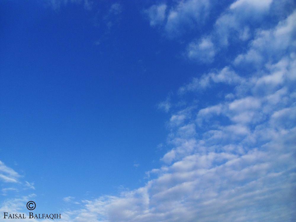 SAM_3288 by FaisalBalfaqih