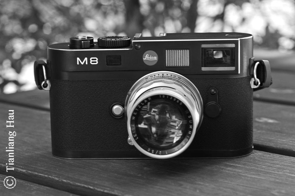 My Leica M8 + Leica Summicron Rigid 1:2/50mm by Tianliang Hau