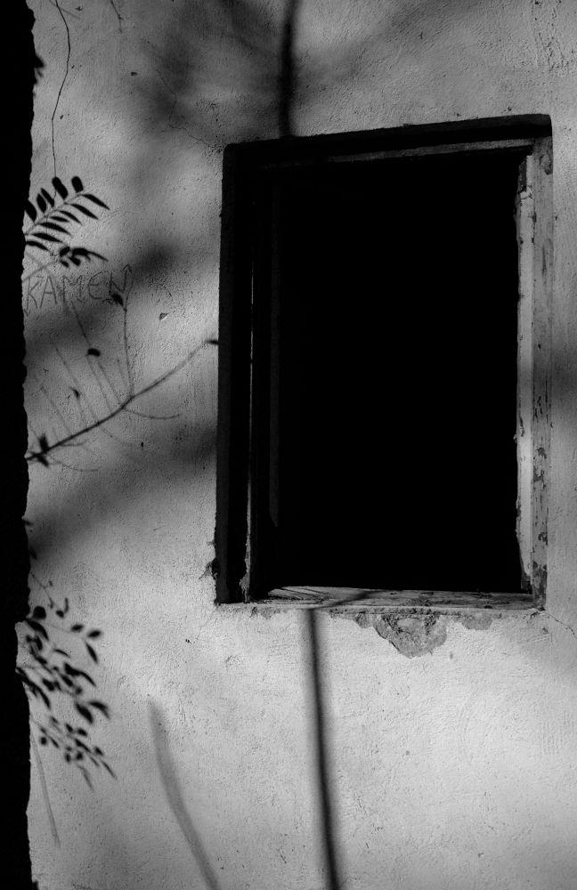 shadow  by Karla Obad