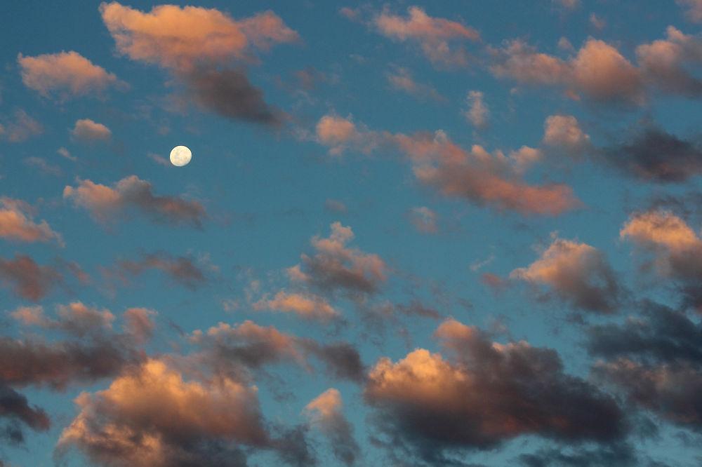 November moon by Agustin