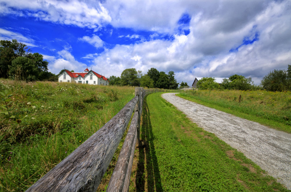 La Clôture et le Chemin...une histoire d'amour! / The Fence and the Road...a love story! by sevyl