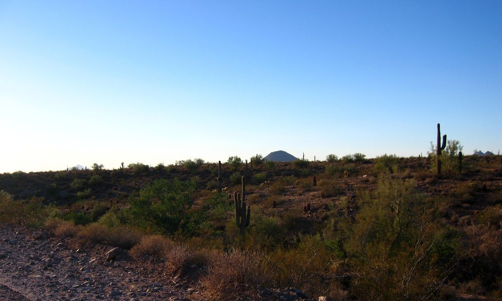 BooBoo in the Desert-025 by wNG iMAGE aND dESIGN