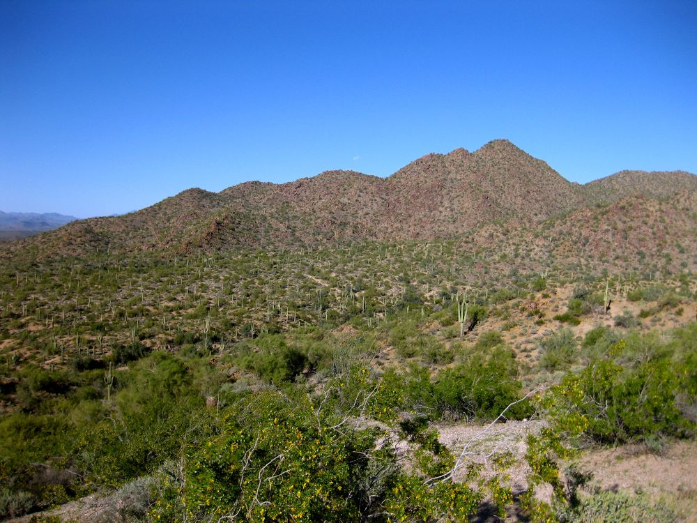 2014-03-15 Hawes Trail-055  Usery Mountain by wNG iMAGE aND dESIGN