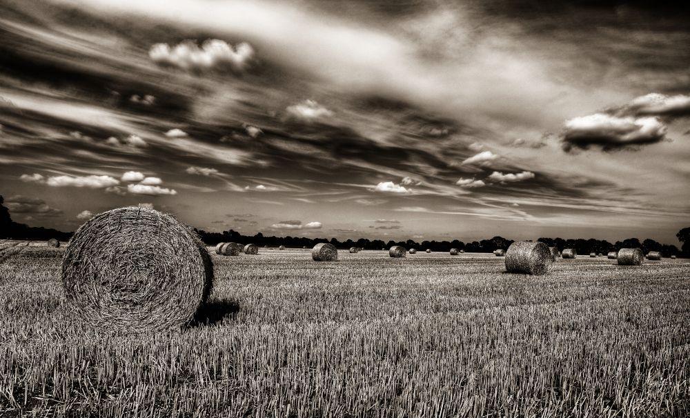 Hay Rolls by Kaherdin
