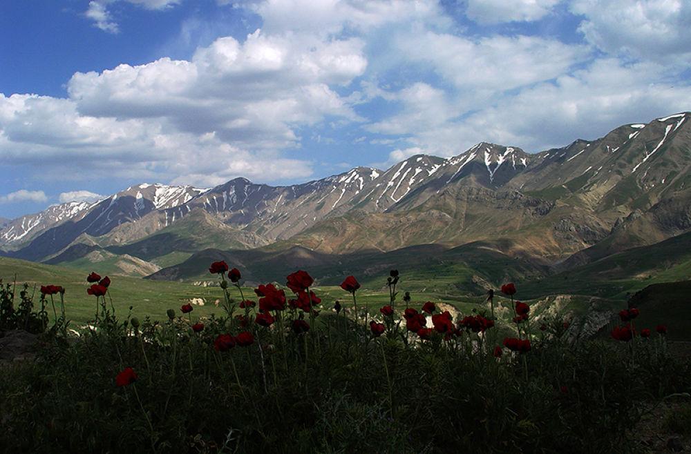 IRAN-polour-mazandran by karimbabaei