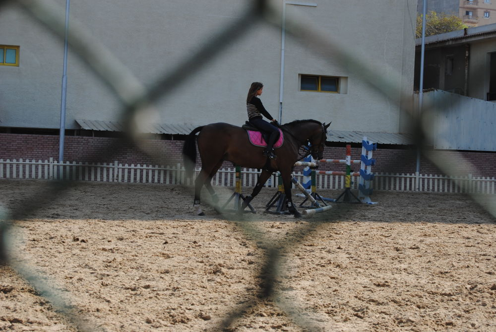 Horse Riding by MariamAwad