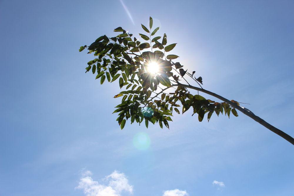 under the sun by japhetcervantes