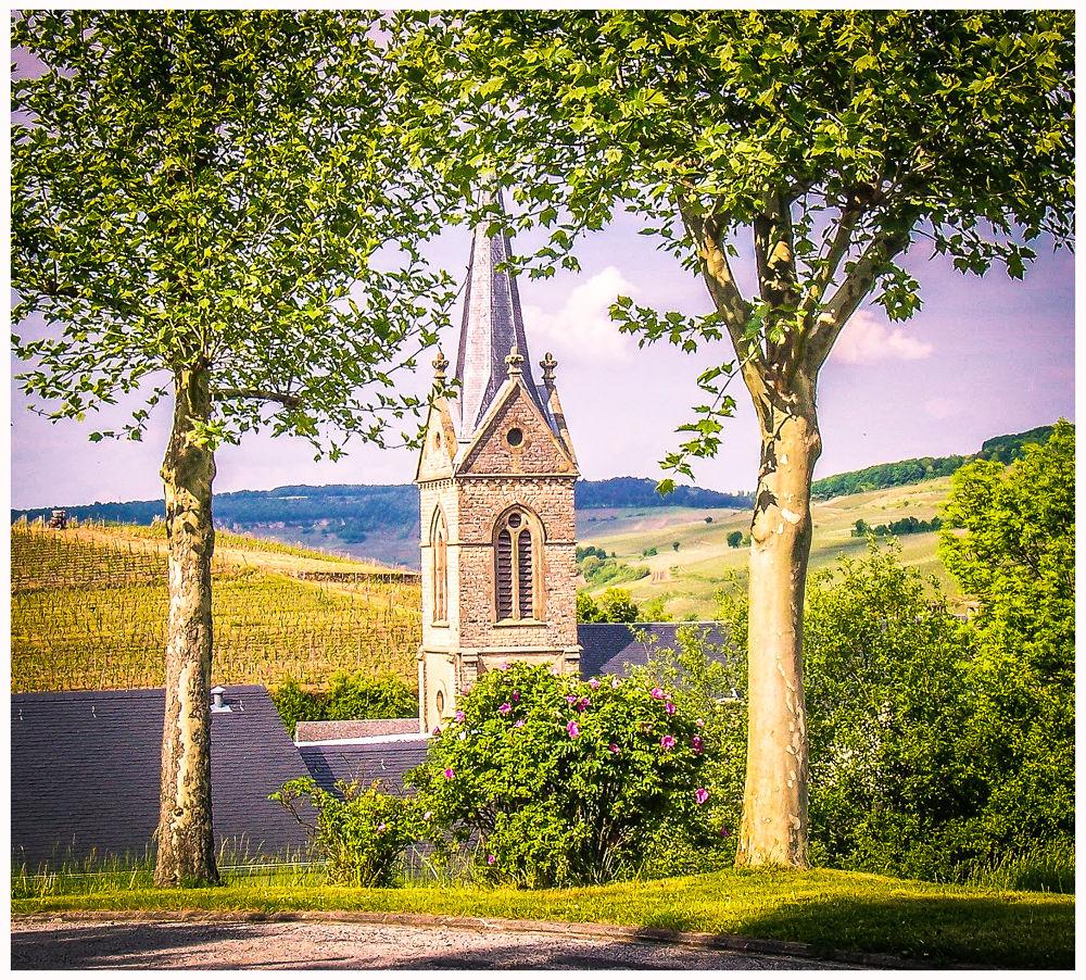 Vignes luxembourgeoises by Leo