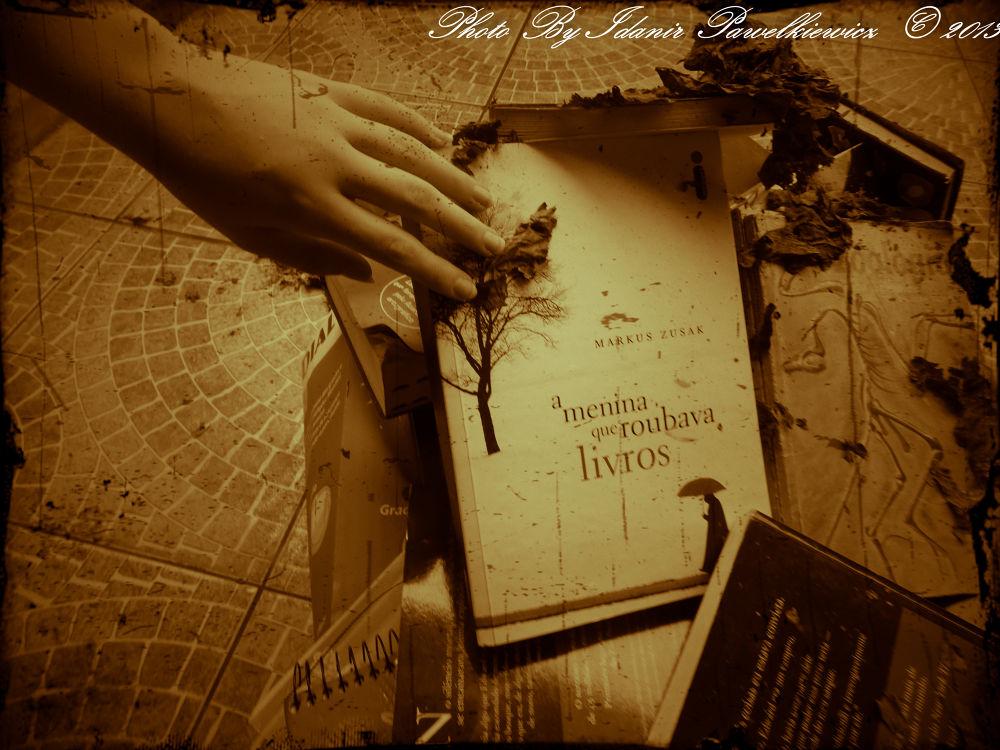 A menina que rouba livros by Idanir Pawelkiewicz