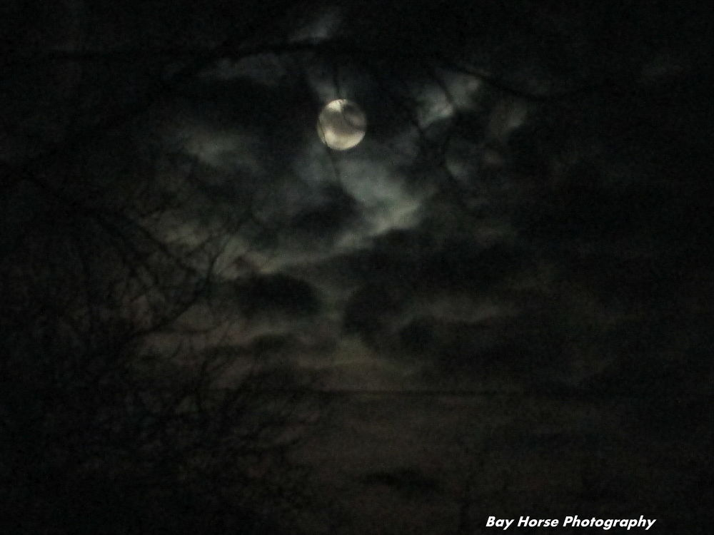 Moon light over IL... by beckyfaustroberts17