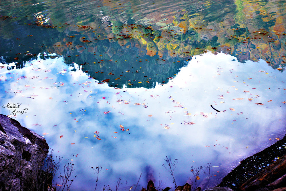 Untitled by nadeenarraf