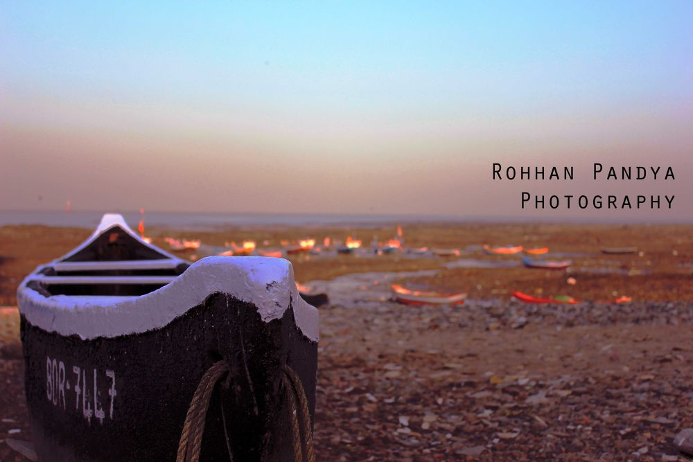 IMG_2983 by rohhanpandya