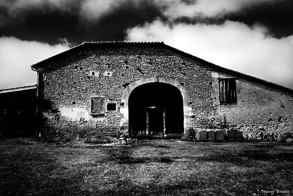 HOME by Thierry d ascia