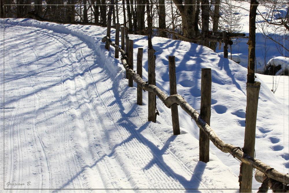 Neve by  Graziano Biancheri