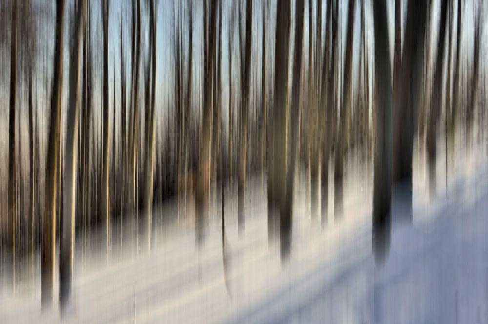 Winter by Marta Walla