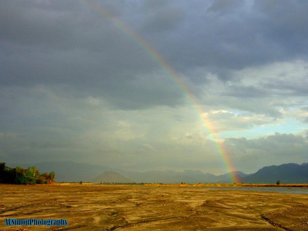 rainbow by simon