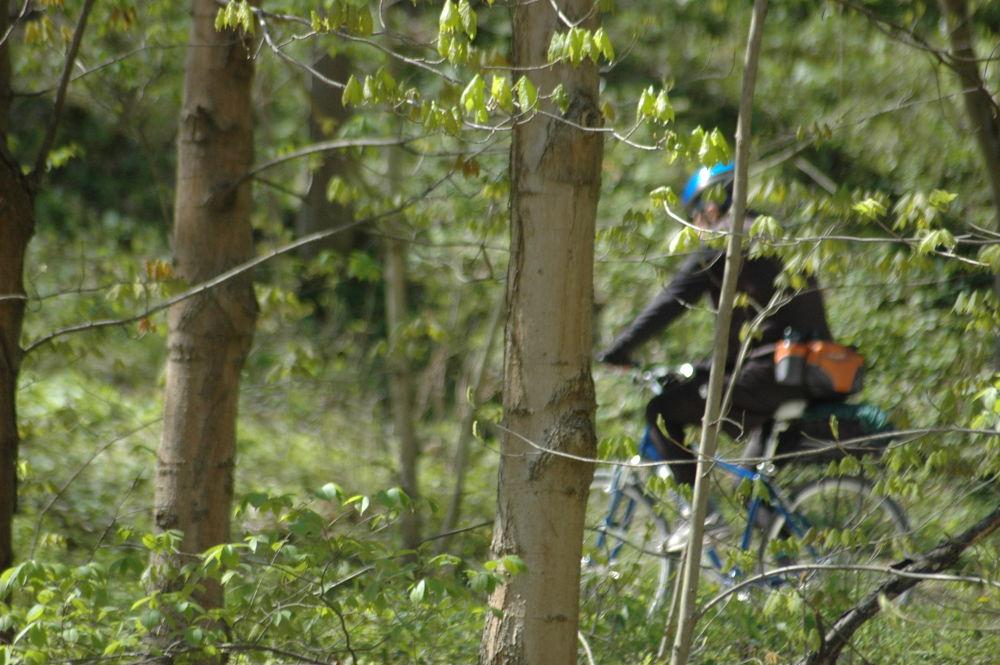 Trail Bike by Shel Yetman
