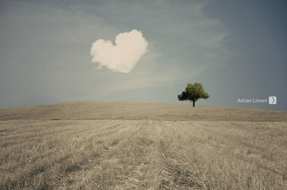 Dreamy Land*7 by Adrian Limani