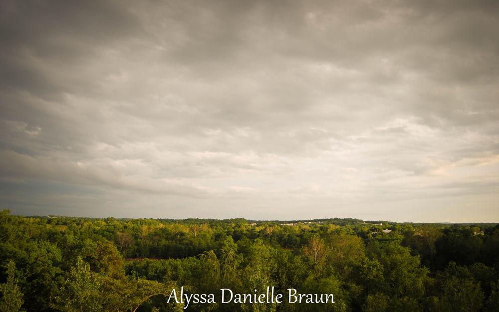 DSC_0268-1 by Alyssa Danielle Braun
