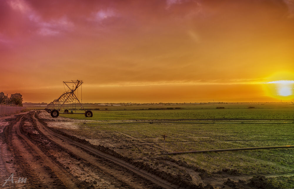 Agriculture Sunset by amit matzliach