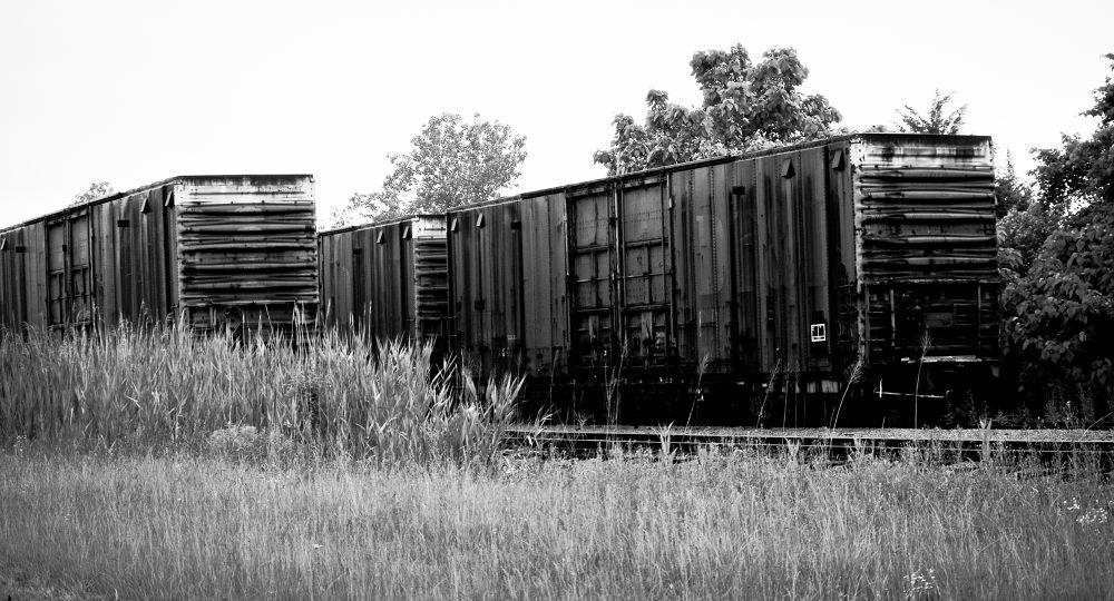 Railroad Cars by chuckhildebrandt7