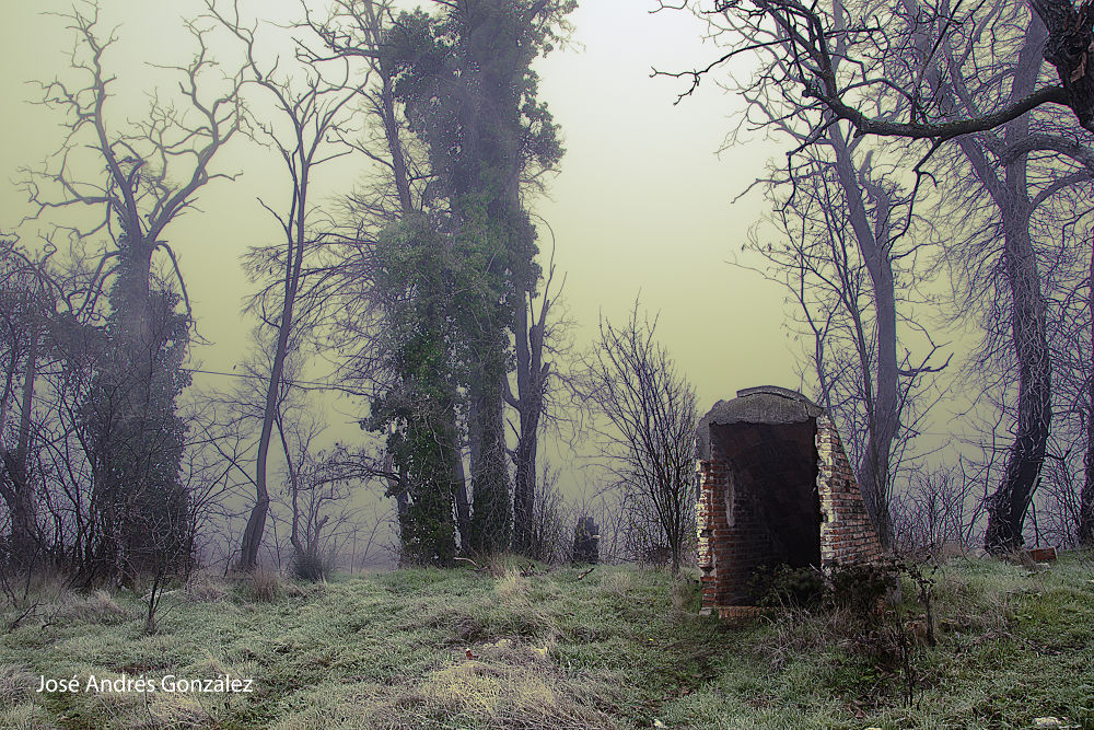 The entry by JoseAndresGonzalezRanilla