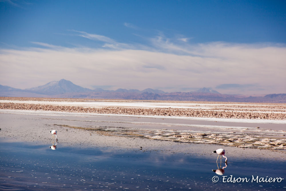 Salar do Atacama by emaiero