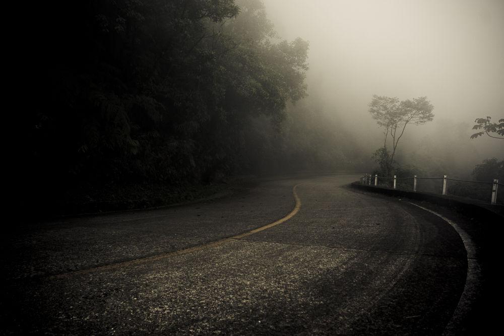 Curvas na neblina by emaiero