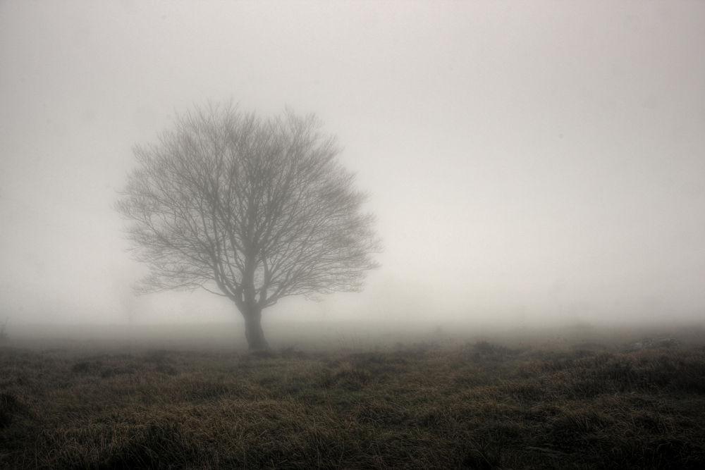 Alone by aitor arana arruti