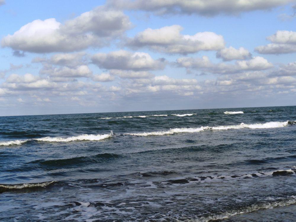 caspian sea by zara langeroodi