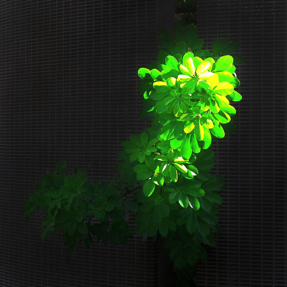 art gallery 37 by ryouichiyamazaki