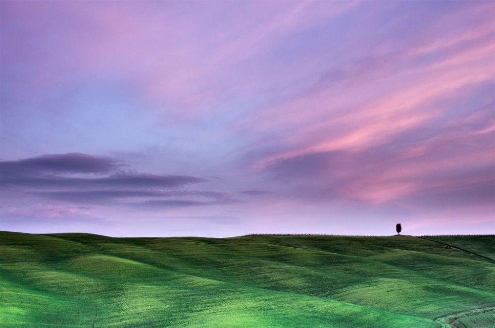 Photo in Landscape #toscana #s.quirico d'orcia #cipressi