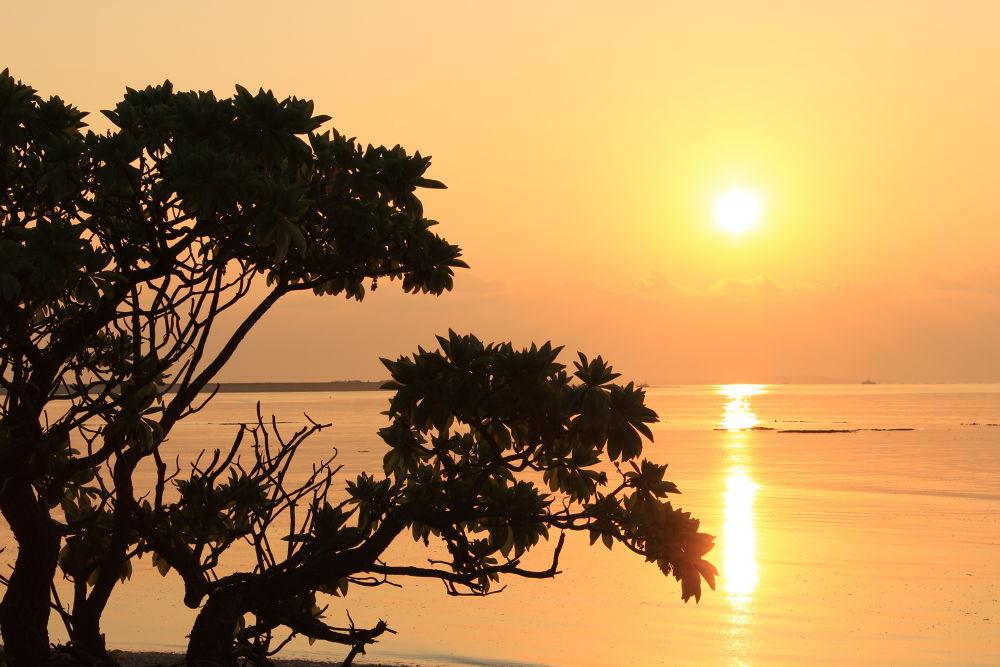 sunset by eddie cervantes