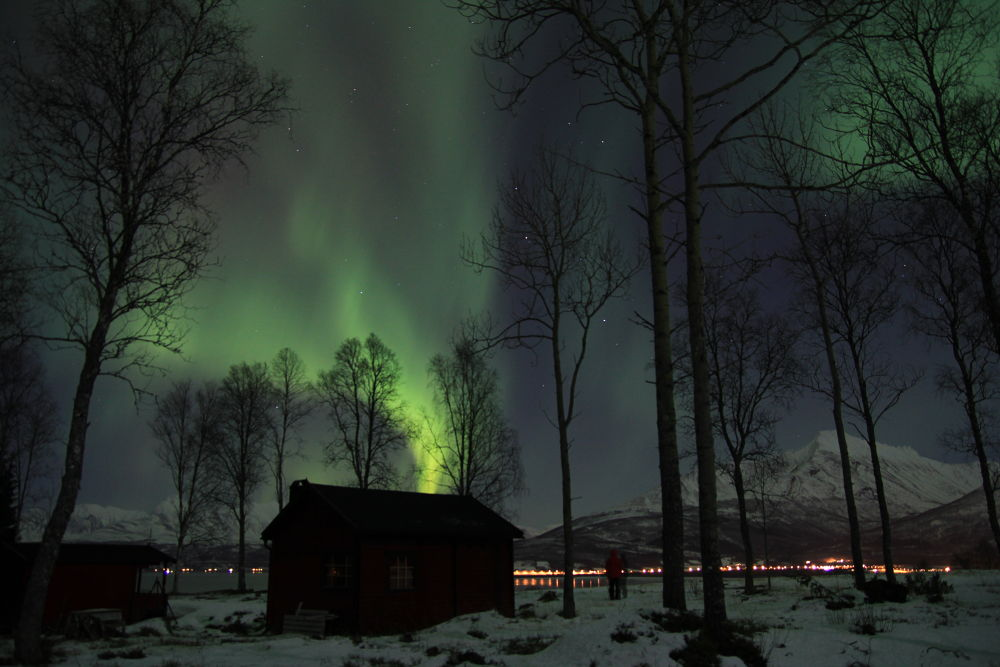 Photo in Random #northen light balsfjord