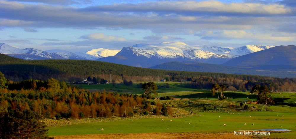 Cairngorms by Darren Watts Photography