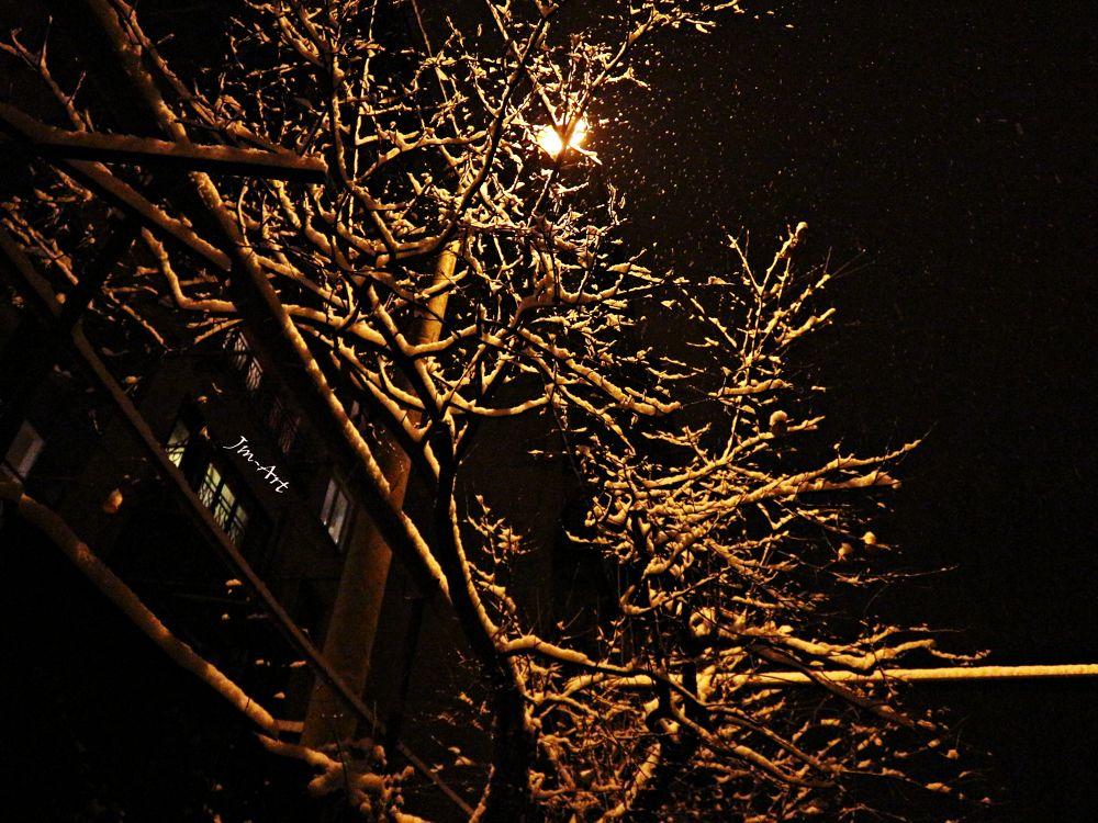 Winter by jmagalashvili