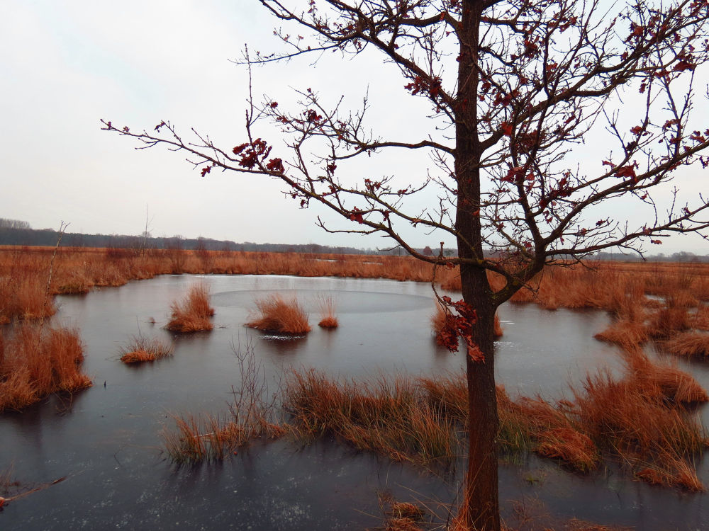 Winter Time by peterkryzun