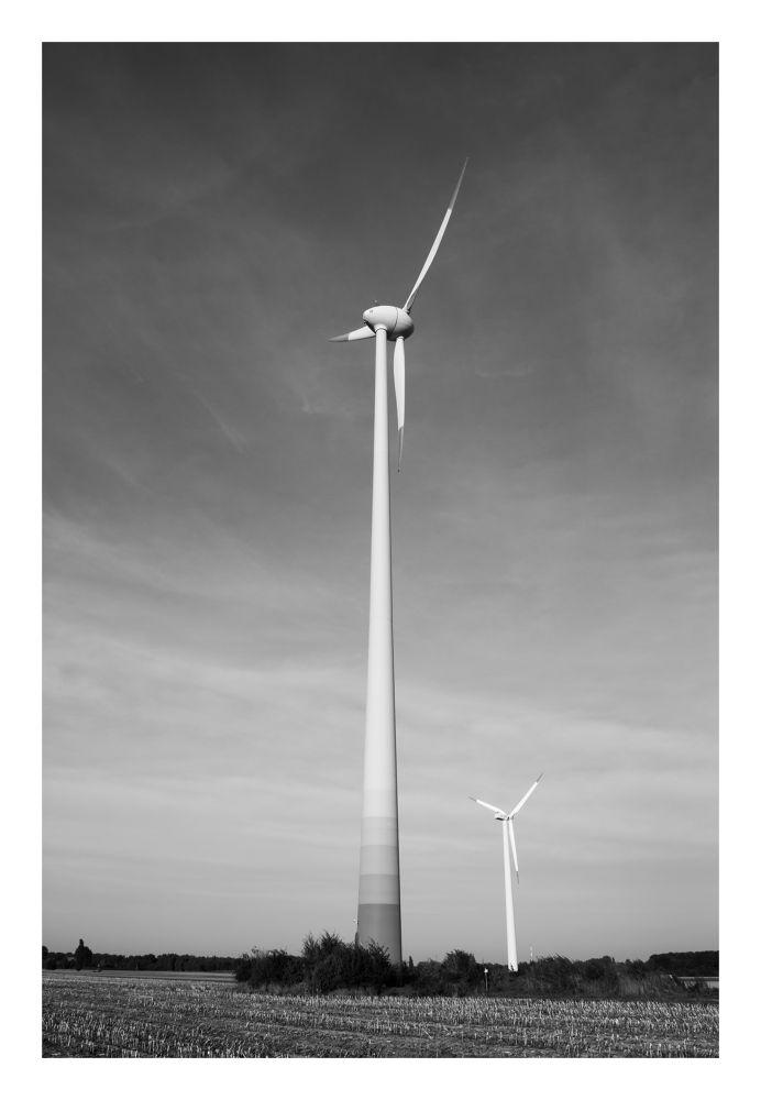 Wind by peterkryzun