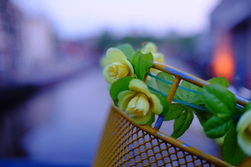 Romantic Amsterdam by peterkryzun