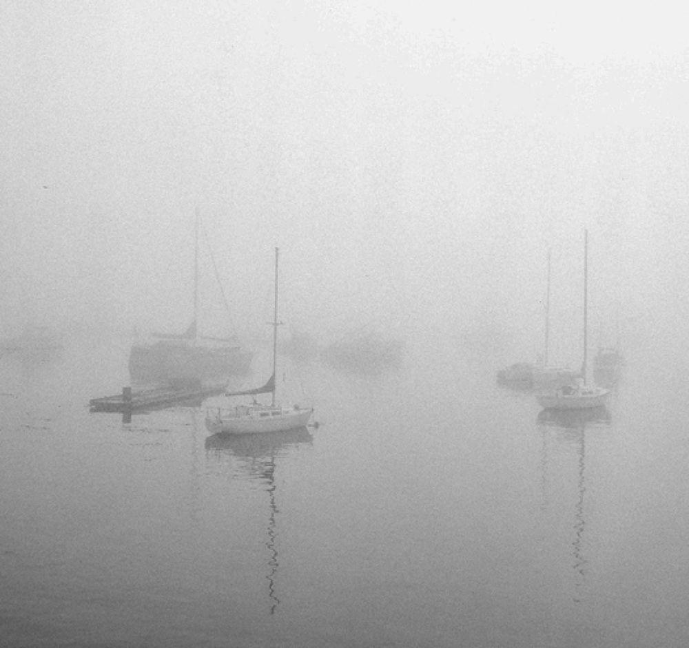 Foggy Monterey Bay  by jeffsinnock