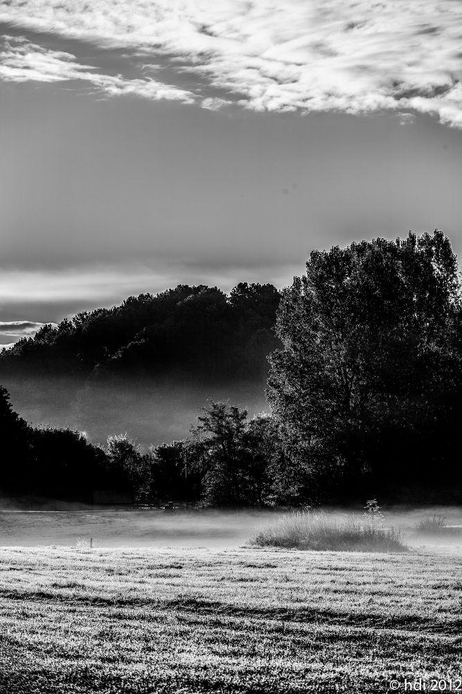 haze on the meadow by weaksyntax