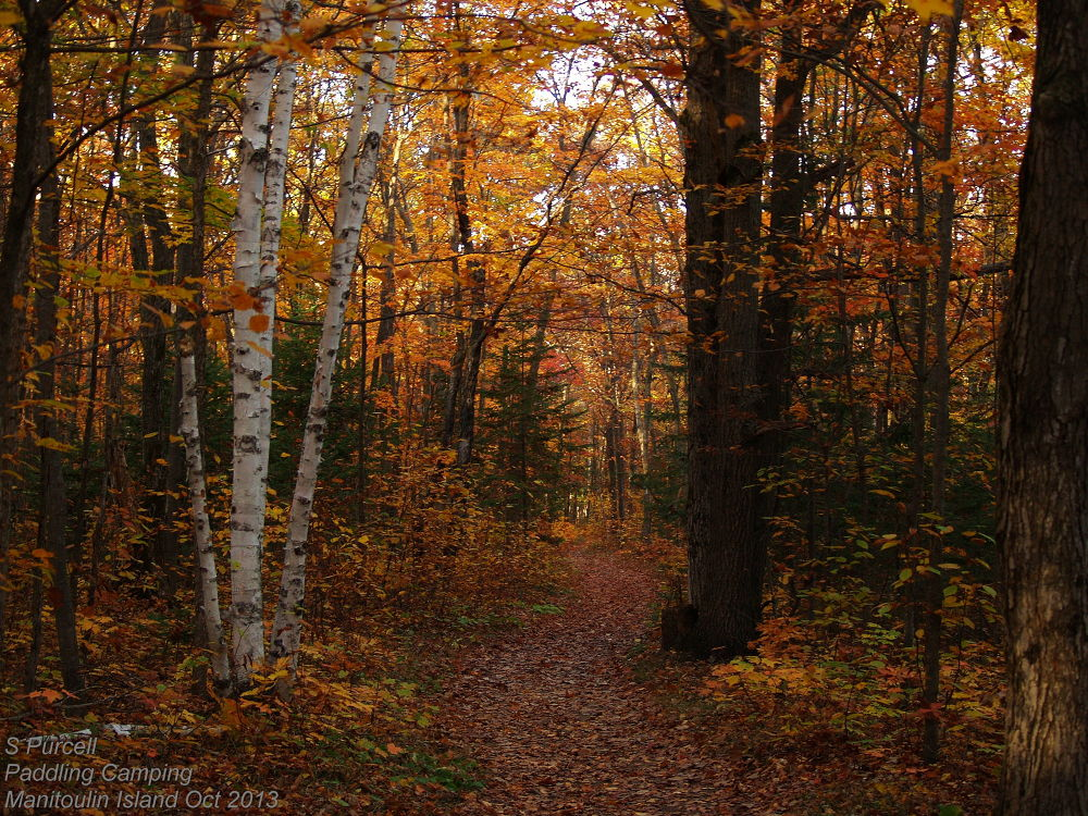 A walk on Manitoulin Island by Sean Purcell