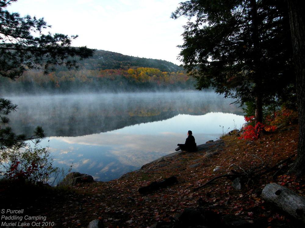 Meditating in Killarney by Sean Purcell
