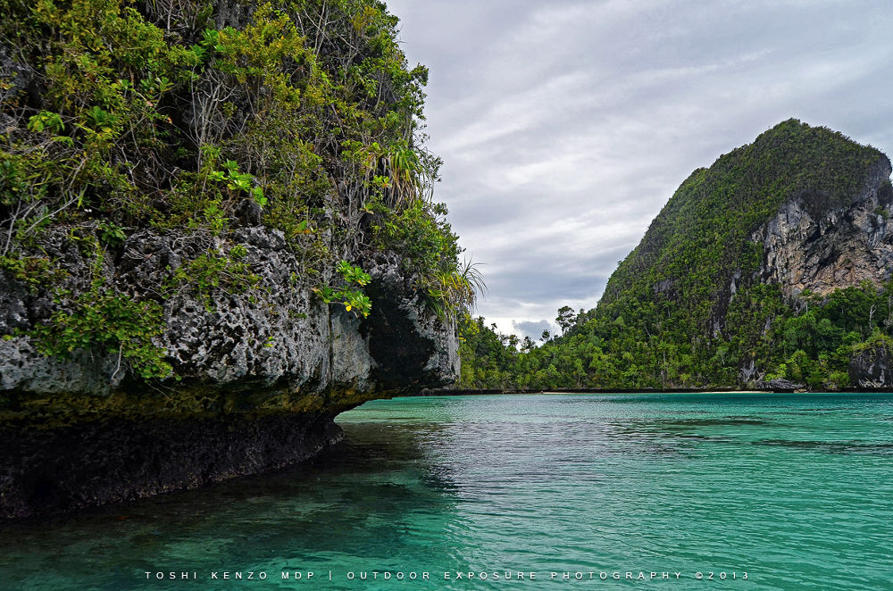 Paradise Island by TOSHI KENZO MDP™