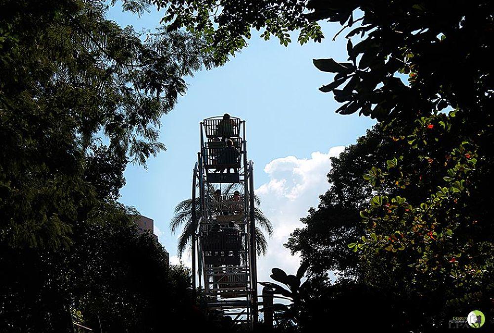 Parque Municipal Américo Renné Giannetti  by leticiapam