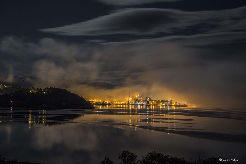 Fog by Morten Eriksen