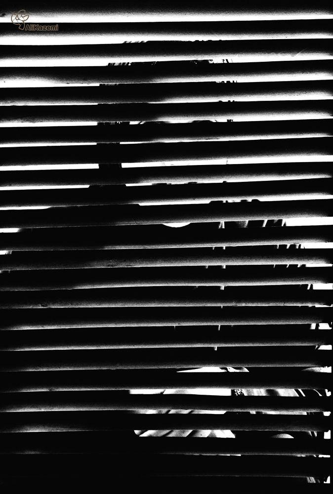 behind the door, inside the life by alikazemi