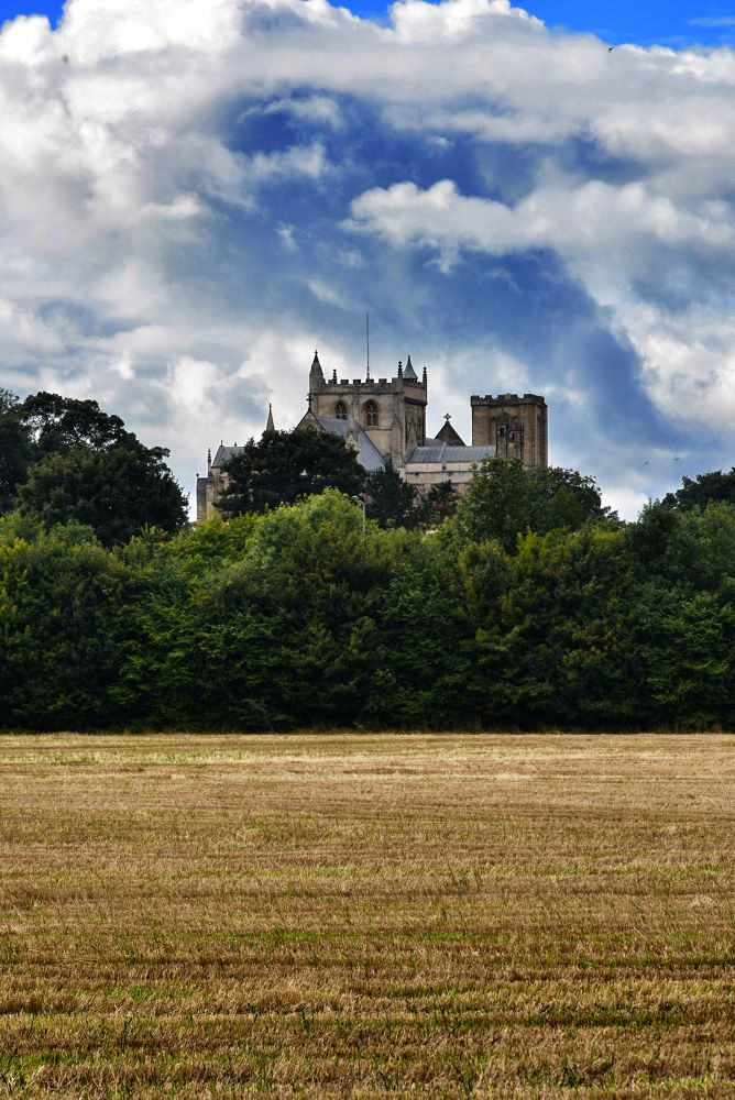 Ripon Cathedral by Dale Hobson