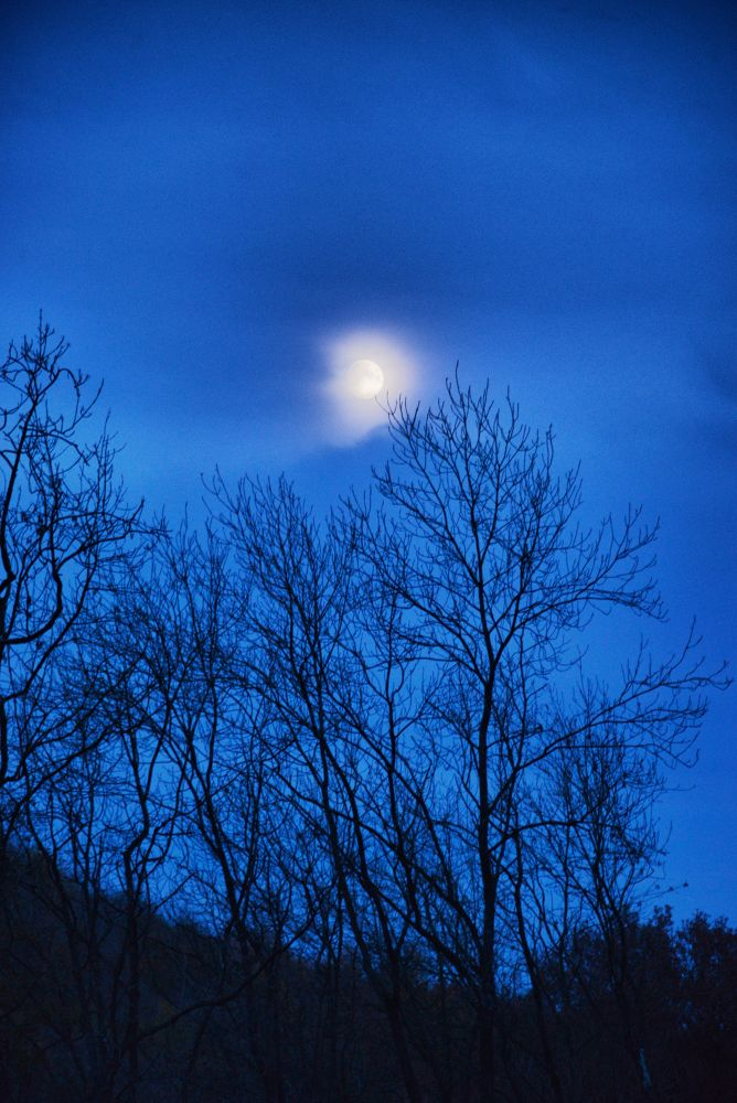 Cloudy Moon by Dale Hobson